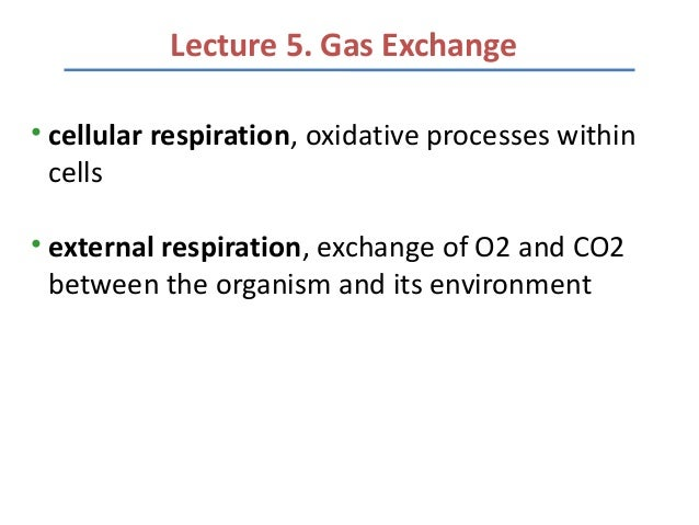 Lecture 5. Gas Exchange• cellular respiration, oxidative processes within  cells• external respiration, exchange of O2 and...