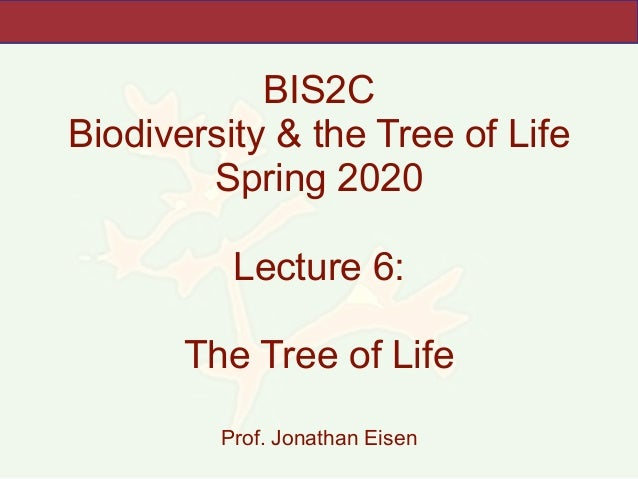 BIS2C Biodiversity & the Tree of Life Spring 2020 Lecture 6: The Tree of Life Prof. Jonathan Eisen
