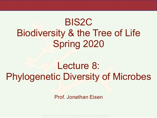 Slides by Jonathan Eisen for BIS2C at UC Davis Spring 2020 BIS2C Biodiversity & the Tree of Life Spring 2020 Lecture 8: Ph...