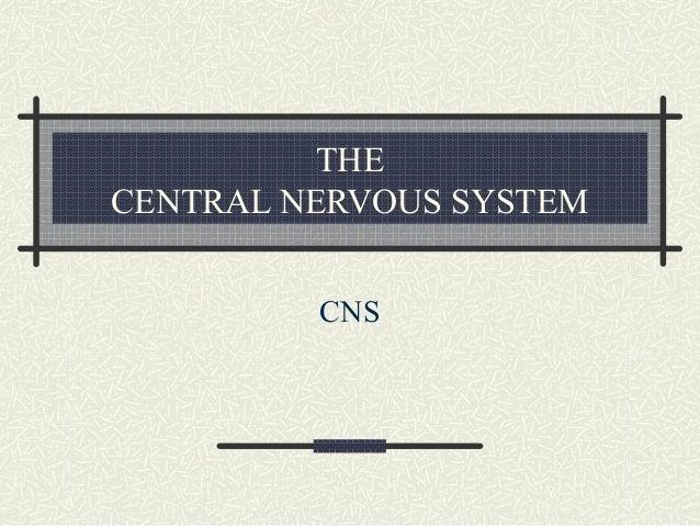THE CENTRAL NERVOUS SYSTEM CNS