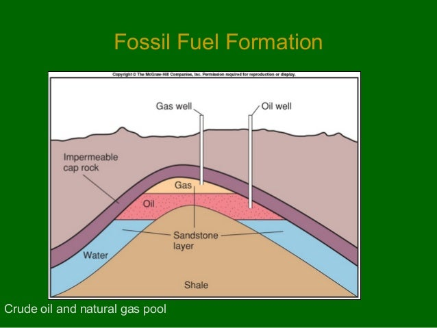 Oil And Natural Gas Originated From In Marine Sediments