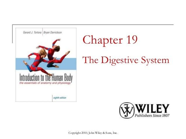 Copyright 2010, John Wiley & Sons, Inc. Chapter 19 The Digestive System