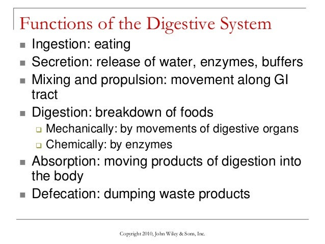 1190051 additionally 6353128 in addition BGD Digest in addition Lecture 9 The Digestive System as well Git 32506522. on pharynx digestion