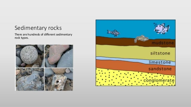 Glencoe Earth Science Chapter Resources 8 Erosional Forces ...