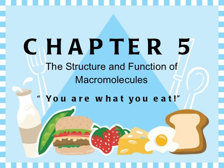 "CHAPTER 5 The Structure and Function of Macromolecules <ul><li>"" You are what you eat!"" </li></ul>"