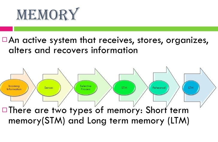 Lecture in gen psych chapter 5 learning and memory