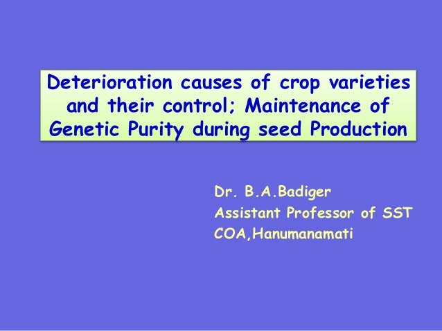 Deterioration causes of crop varieties and their control; Maintenance of Genetic Purity during seed Production Dr. B.A.Bad...