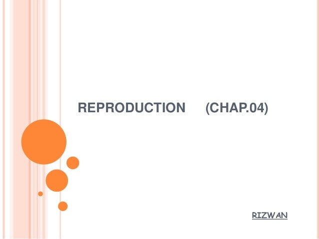 REPRODUCTION (CHAP.04) RIZWAN