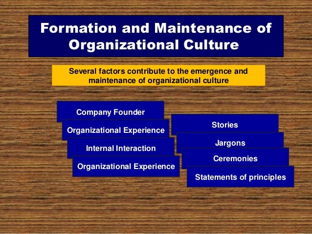 organizational beh The text covers all areas and ideas of organizational behavior including aspects  of both demographic and cultural diversity, individual differences read more.