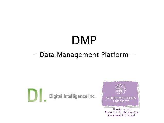 DMP - Data Management Platform -