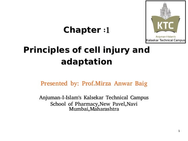 Cell Injury Ppt