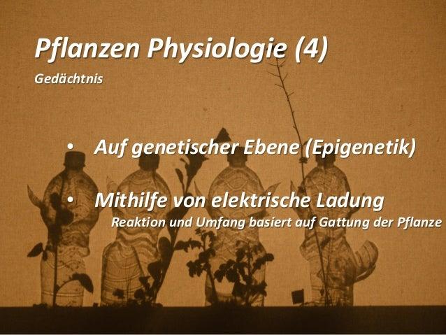Pflanzen Physiologie (4) Gedächtnis • Auf genetischer Ebene (Epigenetik) • Mithilfe von elektrische Ladung Reaktion und Um...