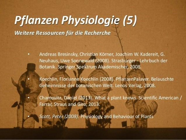 Pflanzen Physiologie (5) Weitere Ressourcen für die Recherche • Andreas Bresinsky, Christian Körner, Joachim W. Kadereit, ...