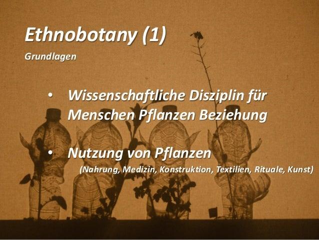 Ethnobotany (1) Grundlagen • Wissenschaftliche Disziplin für Menschen Pflanzen Beziehung • Nutzung von Pflanzen (Nahrung, ...