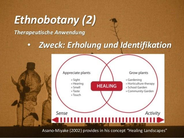Ethnobotany (2) Therapeutische Anwendung • Zweck: Erholung und Identifikation Asano-Miyake (2002) provides in his concept ...