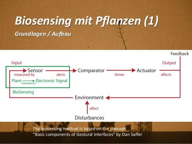 "Biosensing mit Pflanzen (1) Grundlagen / Aufbau The biosensing method is based on the concept ""Basic components of Gestura..."