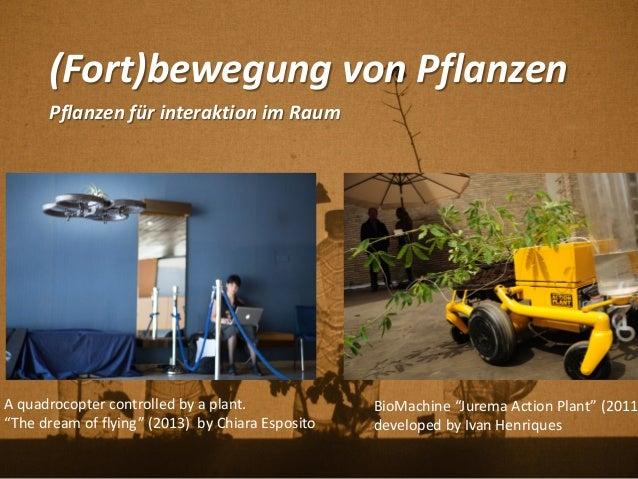 """(Fort)bewegung von Pflanzen Pflanzen für interaktion im Raum BioMachine """"Jurema Action Plant"""" (2011 developed by Ivan Henr..."""