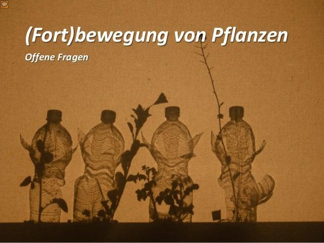 (Fort)bewegung von Pflanzen Offene Fragen