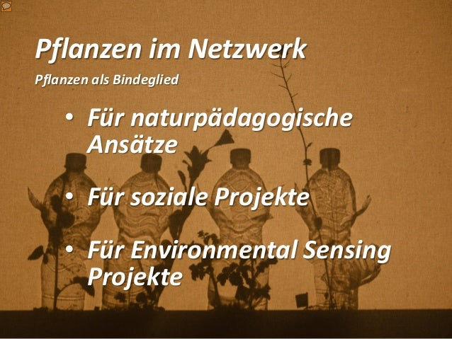 Pflanzen im Netzwerk Pflanzen als Bindeglied • Für naturpädagogische Ansätze • Für soziale Projekte • Für Environmental Se...