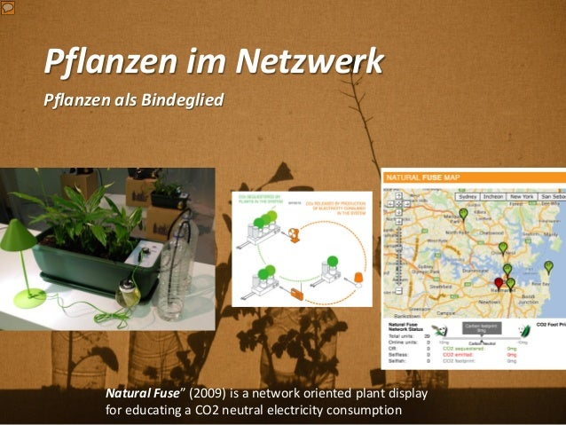 """Pflanzen im Netzwerk Pflanzen als Bindeglied Natural Fuse"""" (2009) is a network oriented plant display for educating a CO2 ..."""