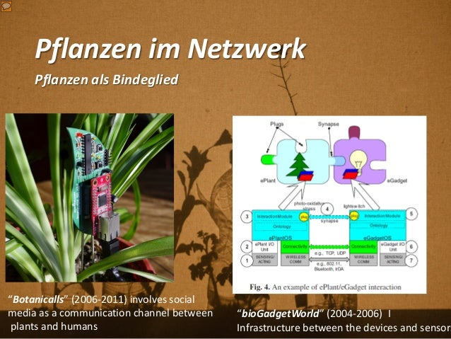 """Pflanzen im Netzwerk Pflanzen als Bindeglied """"Botanicalls"""" (2006-2011) involves social media as a communication channel be..."""