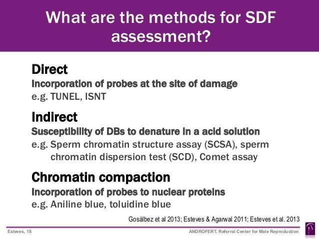Sperm chromatic structure assay