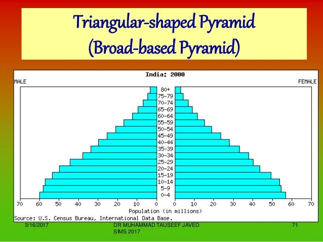 Top heavy broad based population structure