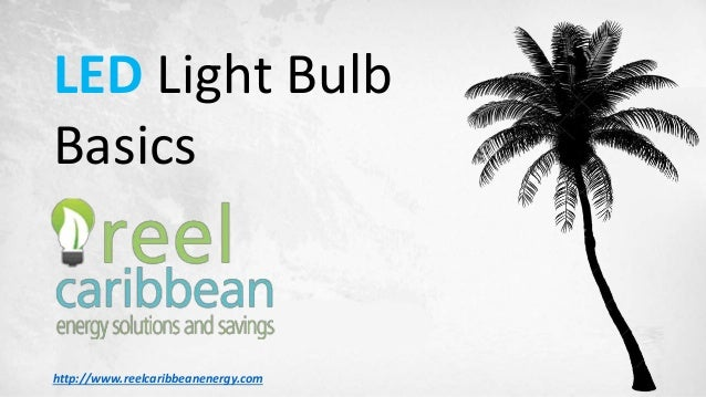 LED Light Bulb Basics http://www.reelcaribbeanenergy.com