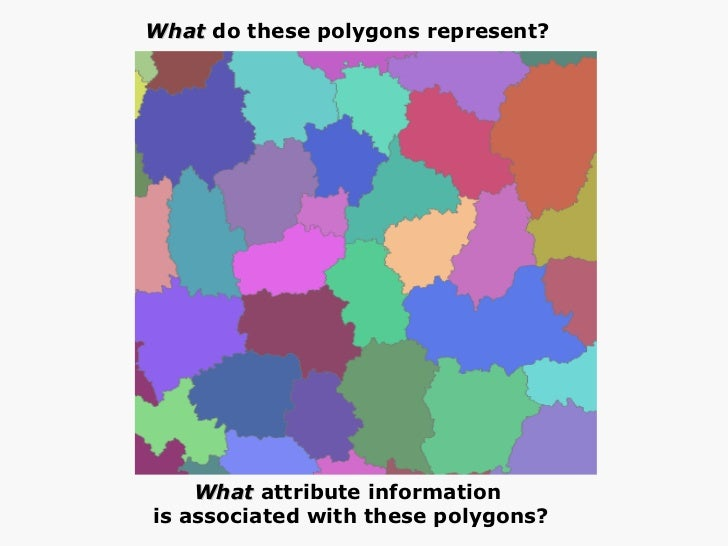 What  do these polygons represent?  What  attribute information  is associated with these polygons?