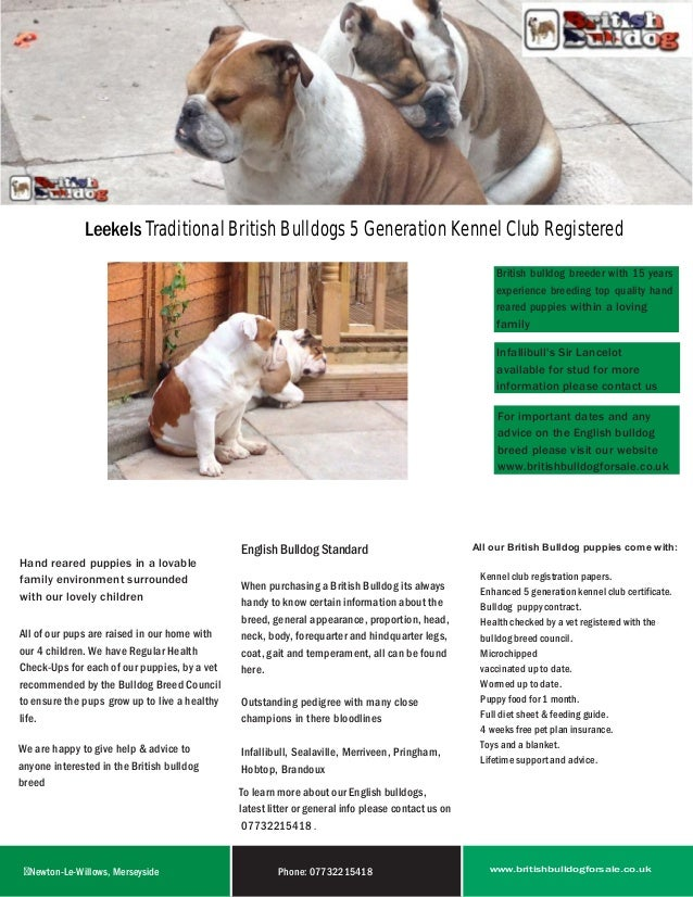 Leekels British Bulldogs For Sale Brochure
