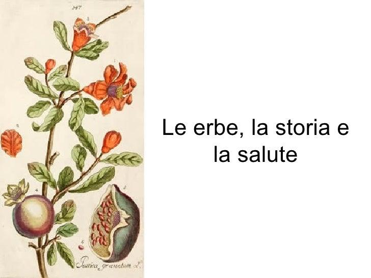 Le erbe, la storia e la salute