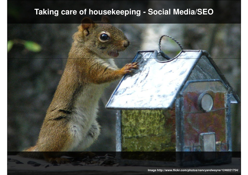 Taking care of housekeeping - Social Media/SEO                                  Image http://www.flickr.com/photos/nancyan...