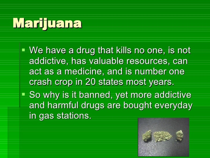 marijuana should not be legalized in canada essay Marijuana should not be legal title: against marijuana legalization against legalization of marijuana in canada essay - should marijuana be sold at corner.