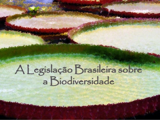 1 A Legislação Brasileira sobre a Biodiversidade