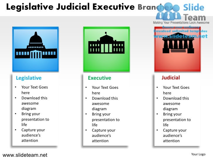 the relationship between the executive branch and the bureaucracy in america Other types of institutional relationships exist between branches of government, including impeachment of executive or judicial officials by the legislature, and relationships between the states, federal government and native american tribes.