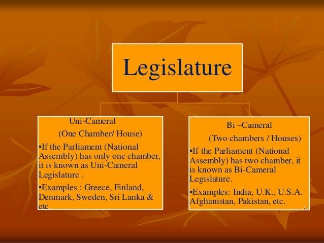 What A single-chamber legislature