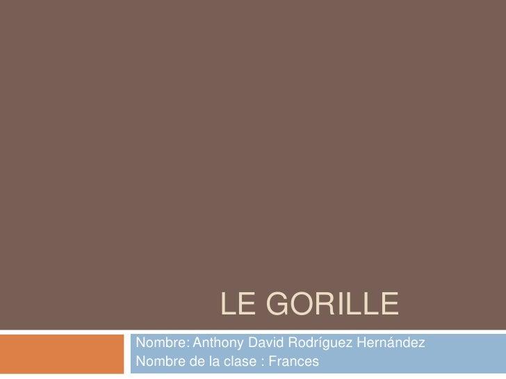 LE GORILLE<br />Nombre: Anthony David Rodríguez Hernández<br />Nombre de la clase : Frances<br />