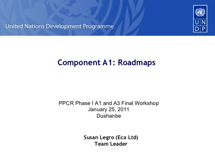Component A1: Roadmaps PPCR Phase I A1 and A3 Final Workshop January 25, 2011 Dushanbe Susan Legro (Eco Ltd) Team Leader