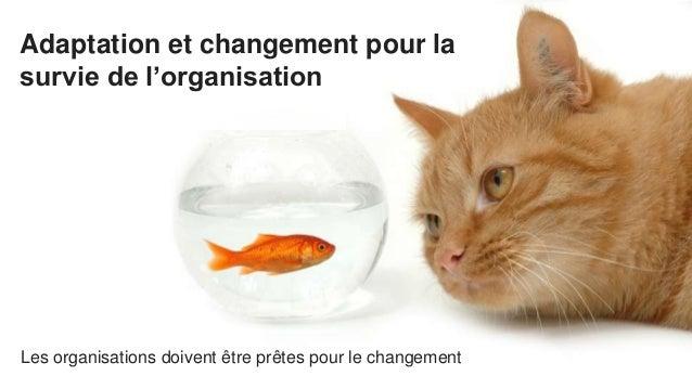 Adaptation et changement pour la survie de l'organisation Les organisations doivent être prêtes pour le changement