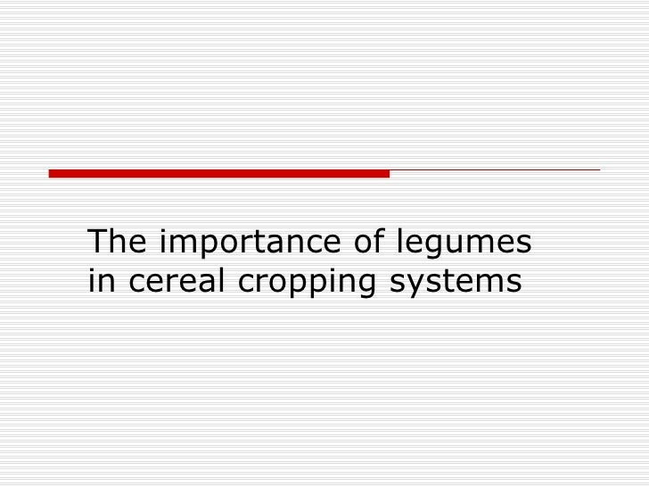 The importance of legumes in cereal cropping systems