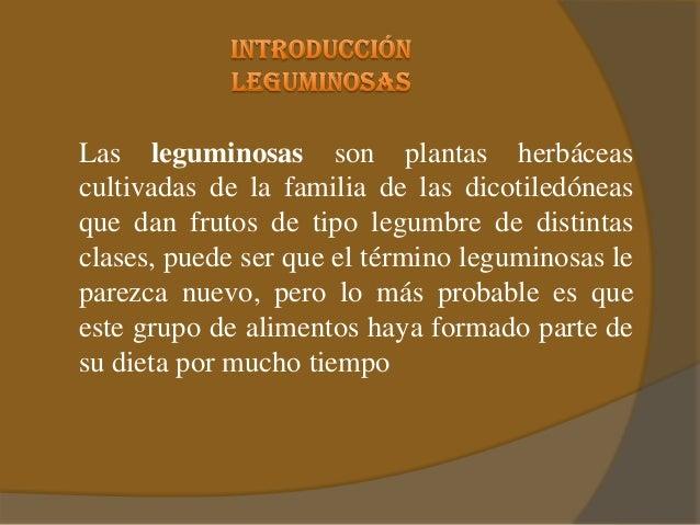 Leguminosas for Que significa contemporaneo wikipedia