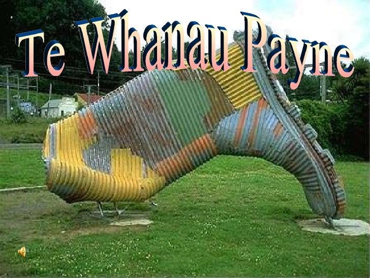 Te Whanau Payne