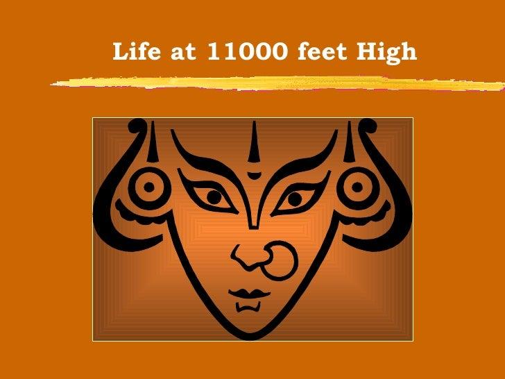 Life at 11000 feet High