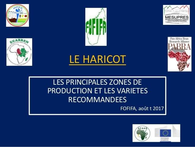 LE HARICOT LES PRINCIPALES ZONES DE PRODUCTION ET LES VARIETES RECOMMANDEES FOFIFA, août t 2017