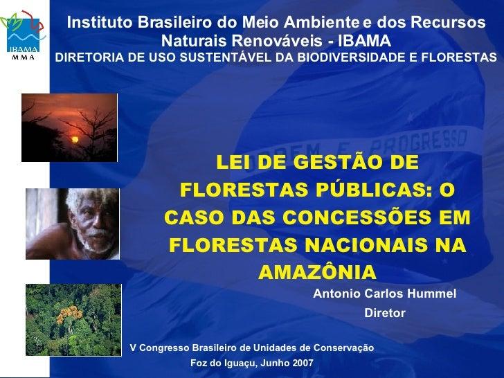 Instituto Brasileiro do Meio Ambiente e dos Recursos               Naturais Renováveis - IBAMA DIRETORIA DE USO SUSTENTÁVE...