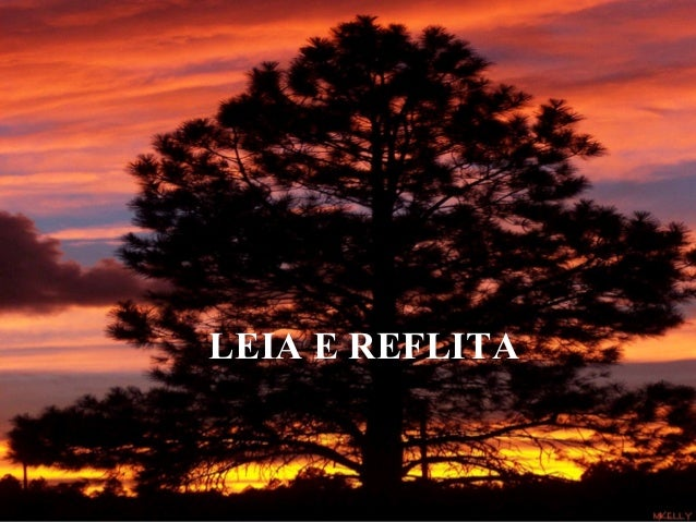 LEIA E REFLITA