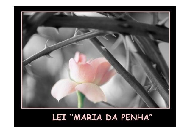 "LEI ""MARIA DA PENHA"""