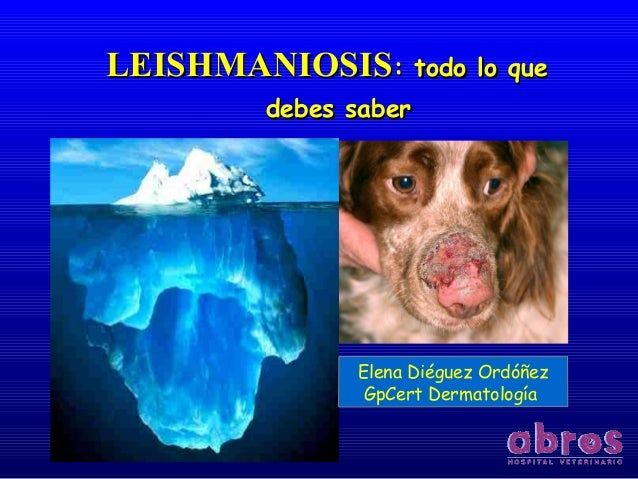 LEISHMANIOSISLEISHMANIOSIS: todo lo que: todo lo que debes saberdebes saber Elena Diéguez Ordóñez GpCert Dermatología