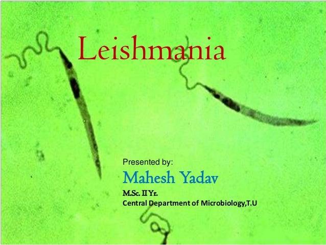 LeishmaniaPresented by:Mahesh YadavM.Sc. IIYr.Central Department of Microbiology,T.U