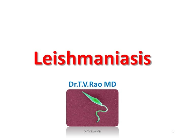 Leishmaniasis   Dr.T.V.Rao MD       Dr.T.V.Rao MD   1